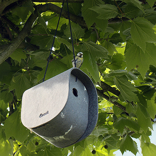 Birdy Nest Box – linnupesa
